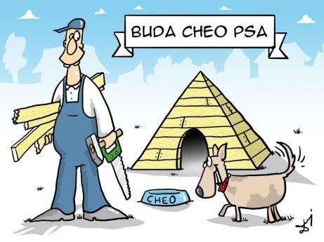 piramida chopsa, majsterkowicz, buda, pies, hobby
